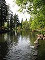 Rhody Garden Lake3.JPG
