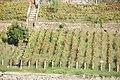 Rio Douro em Portugal DSC01081 (15687075886).jpg