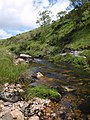 River Erme - geograph.org.uk - 1364291.jpg