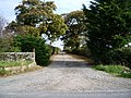Road to Sleightholme Farm - geograph.org.uk - 601069.jpg