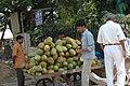 Roadside Coconuts, Bangalore, India (1628817942).jpg