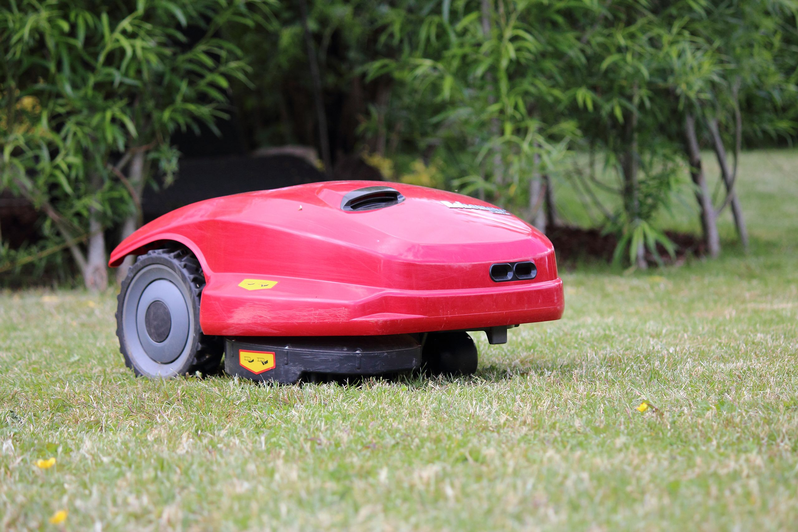 grass cutting robot