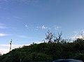 Rock-cornwall-england-tobefree-20150715-202606.jpg