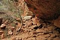 Rocks of Zion National Park (3443201647).jpg