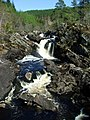 Rogie Falls - geograph.org.uk - 165526.jpg
