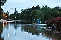 Roman Forest Flooding - 4-18-16 (26448427751).jpg