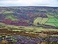 Rosedale Valley - geograph.org.uk - 840263.jpg