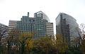 Rosslyn hi-rises.JPG