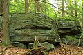 Rough Hill Trail (10) (36137338920).jpg