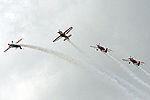 Royal Jordanian Falcons (5132112533).jpg