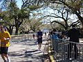 Runners in City Park New Orleans Mardi Gras Rock 'n' Roll Marathon Trip 2010.jpg