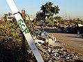 SCF bulldozed 07.jpg
