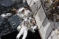 STS-133 EVA1 Steve Bowen and Alvin Drew 4.jpg