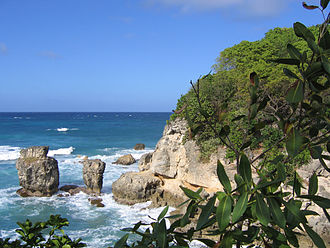Griffith Hughes - Coastline of St. Lucy's Parish, Barbados
