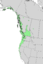 Salix sitchensis range map 3.png
