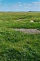 Saltholm - panoramio (32).jpg