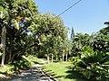 San Juan Botanical Garden - DSC06978.JPG