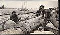 Sawmill in Korea - Sawing by Hand (1912 by Elstner Hilton).jpg