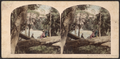 Scene on Luna Island, Niagara, from Robert N. Dennis collection of stereoscopic views.png
