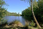 Schleswig-Holstein, Tellingstedt, Landschaftsschutzgebiet Großes Moor Kätner Moor NIK 7146.jpg