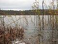 Schmiedegrundsee-29-11-2009-159.jpg