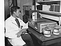 Scientist Working in a Laboratory(GN09041).jpg