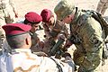 Security Battalion, Nineveh Operations Command conducts weapons diagnostics 160214-A-KH215-112.jpg