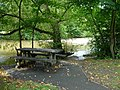 Shady picnic table - geograph.org.uk - 991916.jpg