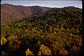 Shenandoah National Park SHEN3066.jpg