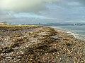 Shoreline at Cromarty - geograph.org.uk - 2175394.jpg