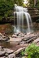 Smokey Hollow Falls (29097053327).jpg