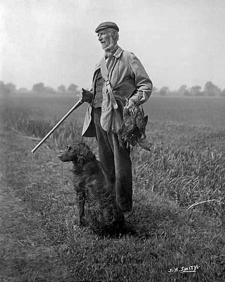Snowden Slights with retriever and shotgun around 1910, 'the last of Yorkshire's Wildfowlers' Snowden Slights, front view YORYM-S13.jpg