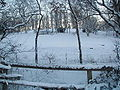 Snowy Sutton Park - Dec 28th 2000.jpg