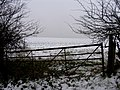 Snowy field north of Seaton Road - geograph.org.uk - 335393.jpg