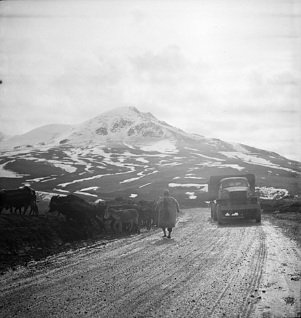 A United States Army truck convoy carrying supplies for the USSR somewhere along the Persian Corridor. c. 1943 Somewhere in the Persian corridor. A United States Army truck convoy carrying supplies for the aid of Russia. An Iranian native moving his livestock from the mountain road as a United States truck passes.jpeg