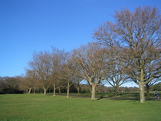 Southampton Common park in the United Kingdom