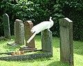 St James' churchyard, Arlington - geograph.org.uk - 879918.jpg