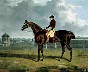 St Patrick (horse) - St. Patrick', the Winner of the Great St. Leger at Doncaster, 1820, by John Frederick Herring, Sr.