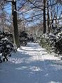 Stadtpark Hamburg im Winter 1.jpg