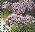 Stamp of Ukraine s1655.jpg