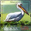 Stamps of Moldova, 036-11.jpg