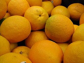 Valencia orange - Valencia oranges for sale.