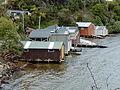 Stewart Island Thule Bay.jpg