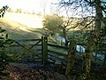 Stile by River - geograph.org.uk - 683151.jpg