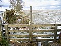 Stile on Public Footpath - geograph.org.uk - 1702374.jpg