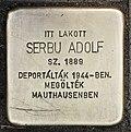 Stolperstein für Adolf Serbu (Miskolc).jpg