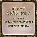 Stolperstein für Gyula Algacs (Újfehértó Város).jpg