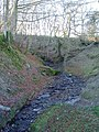 Stream bed near Llanycil. - geograph.org.uk - 327643.jpg