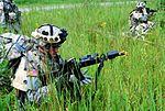 Strike Brigade conducts realistic training DVIDS196565.jpg
