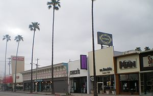 Ventura Boulevard - Studio City Shopping District